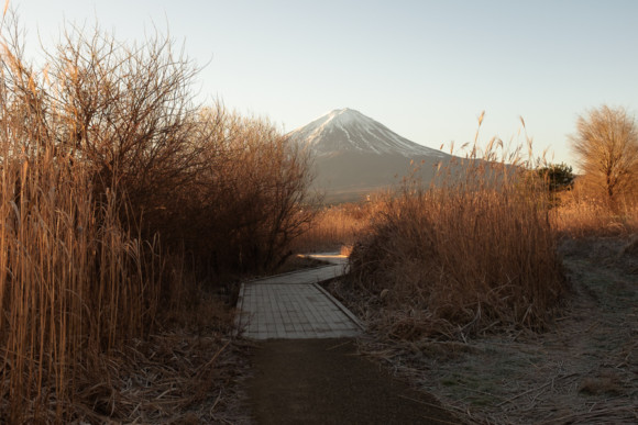 Fuji Mornings